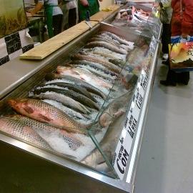 Кифато Корсика рыба на льду